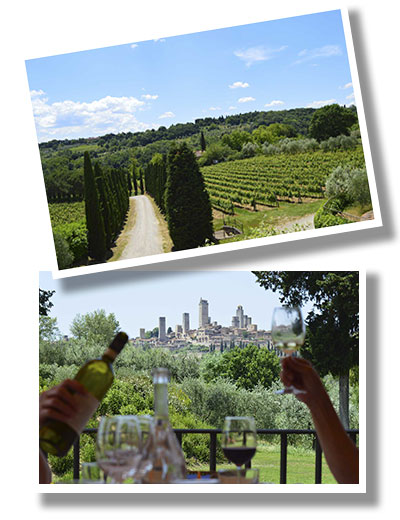 Castelvecchio Forest Tuscany small group walking tour